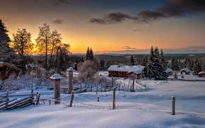 Picture winter, forest, nature, Norway, Norway, Lillehammer