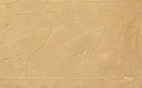 Picture bird, stone, people, texture, symbol, Egypt, profile, bird, Egypt, man, symbol, crane, stick, bas, egyptian, …