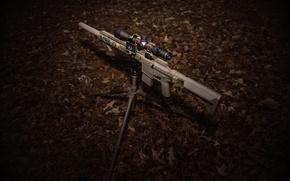 Picture background, optics, assault rifle, fry