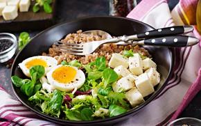 Picture egg, food, vegetables, porridge, arugula, feta cheese