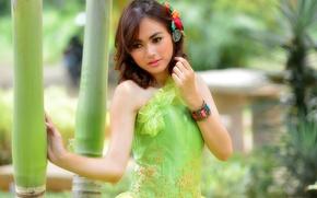 Picture dress, Asian, cutie, Sandra Yunita