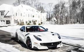 Picture Ferrari, White, F12, TDF