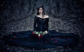 Picture girl, roses, petals, dress, in black, Garcia, Emmanuel