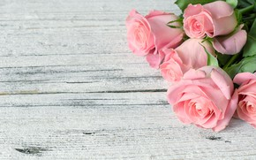 Wallpaper flowers, flowers, bouquet, roses, pink, wood, roses, pink