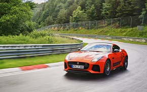 Picture greens, orange, track, Jaguar, turn, dampness, 2016, F-Type SVR Ring-Cat, 575 HP
