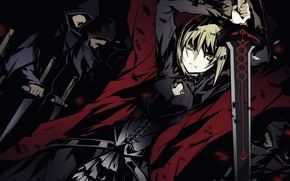 Picture girl, sword, the saber, Fate / Zero, Fate/the beginning