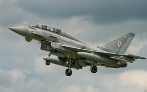 Picture flight, flies, the gray sky, Eurofighter Typhoon, combat Samet
