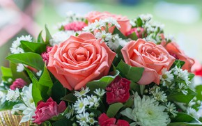 Picture flowers, roses, bouquet