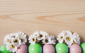 Picture eggs, Easter, Holiday, chrysanthemum