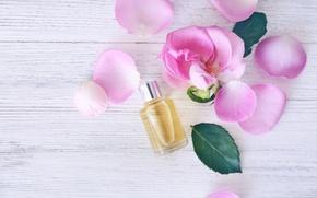 Picture petals, rose, wood, pink, petals, pink roses, spa, oil