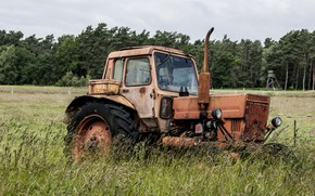 Picture field, grass, headlight, wheel, tractor, agricultural machinery