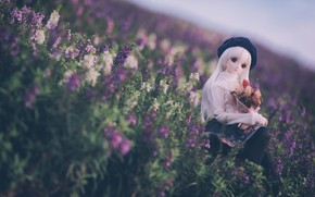 Picture flowers, doll, meadow, takes
