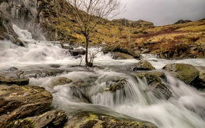 Picture clouds, river, stones, tree, mountain, stream, Wales, Snowdonia