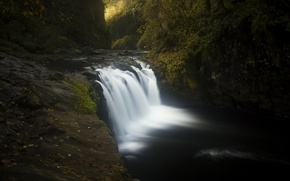 Picture water, trees, stones, moss, Oregon, USA, the Columbia river gorge, Eagle Creek