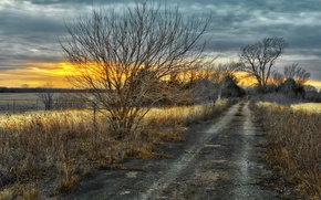 Picture road, sunset, nature