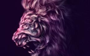 Picture background, animal, predator, Leo, art, profile, Ahmed Karam