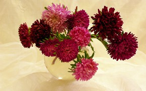Picture autumn, flowers, beauty, October, a bunch, many, composition, flora, bouquets, asters