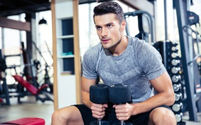 Picture muscle, muscle, training, athlete, dumbbells, biceps, fitness, training, weight, Gym, dumbbells, biceps, bodybuilder, gym