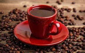 Wallpaper Cup, drink, grain, closeup, red, coffee, bokeh, saucer
