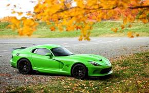 Picture autumn, Dodge, Viper, GTC, T/A