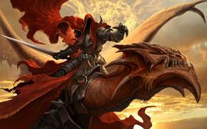Wallpaper dragon, warrior, MRAK 2
