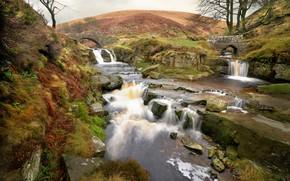 Picture bridge, river, England, Quarnford