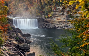 Wallpaper autumn, forest, trees, squirt, fog, river, waterfall, USA