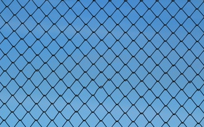 Wallpaper texture, mesh, the fence, netting