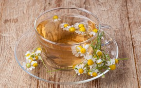 Picture tea, Daisy, drink, flowers