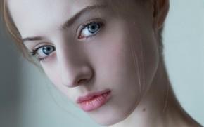 Picture look, macro, sponge, the beauty, curls, Greta Larosa