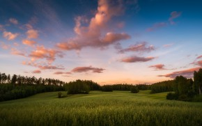 Picture summer, sunset, the evening, Finland, Finland, Tampere has
