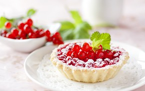 Picture berries, cakes, cakes, powdered sugar, tartlets, red currant