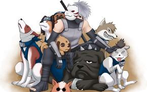 Picture Naruto, anime, manga, Kakashi, ANBU, japonese, Naruto Shipuden