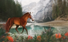 Wallpaper mountains, nature, lake, horse, by Fiirewolf