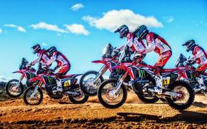 Picture Sport, Motorcycle, Moto, Honda, A lot, Rally, Dakar, Dakar, Rally, Motorcycles, Racers
