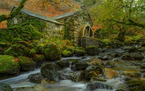 Wallpaper leaves, moss, autumn, trees, stream, water mill, stones