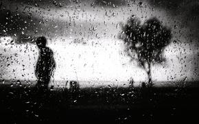 Picture glass, drops, tree, silhouette, b & W photo