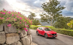 Picture road, auto, flowers, red, Mazda, CX-5, Akera