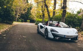 Picture McLaren, supercar, Spider, 570S, Muriwai White