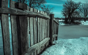 Wallpaper tree, the fence, snow, winter