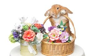 Wallpaper basket, decoration, bunny, Easter, Easter, rabbit, happy, rabbit, spring, flowers, eggs, flowers