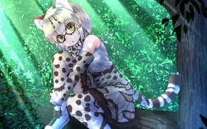 Picture forest, art, girl, kemono friends