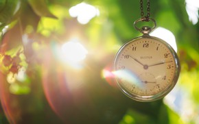 Wallpaper leaves, the sun, watch, dial, chain