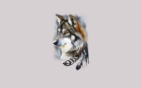 Picture face, wolf, feathers