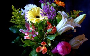 Picture Lily, bouquet, peony, gerbera