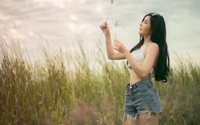 Picture summer, grass, girl, face