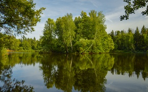 Picture Nature, Lake, Trees, Summer, Nature, Summer, Reflection, Lake, Trees