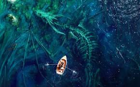 Picture colorful, fantasy, Dragon, sea, water, man, shore, shark, digital art, artwork, boat, bones, fantasy art, ...