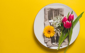 Picture flowers, tulips, serving