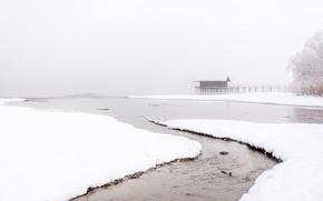 Picture winter, snow, fog, lake